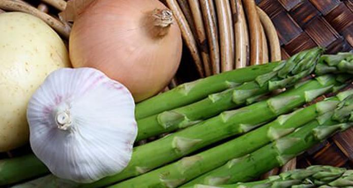 Prebiotics Foods for Digestion