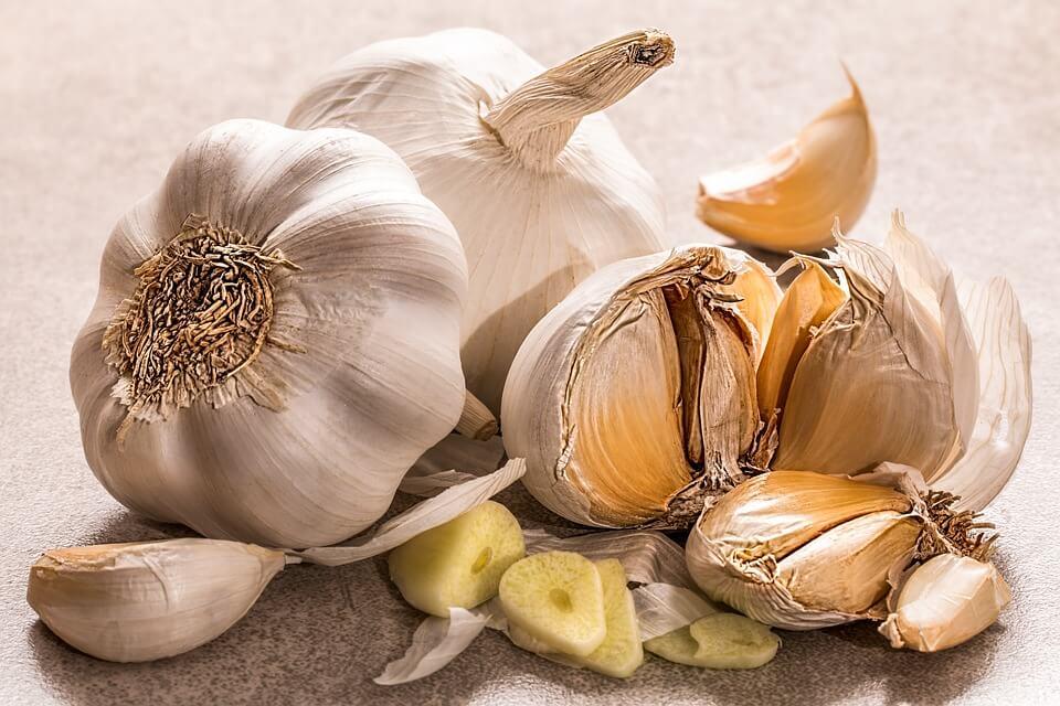 Garlic - Prebiotic Food for Digestion