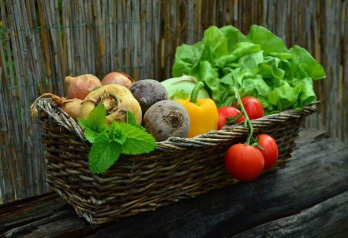 Vegetables - Paleo Diet for Vegetarians