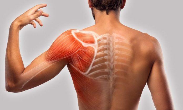 Myths About Back Pain Treatment