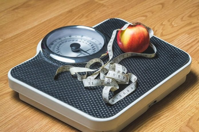 Weight Loss Programs and Solutions