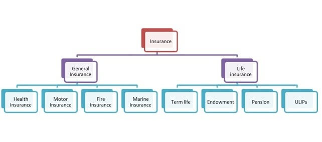 Type of Insurance Policy
